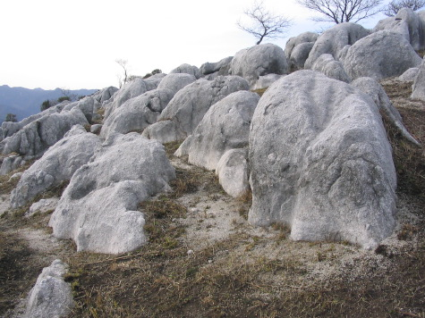 Photo of Hiraodai Limestone Plateau, used as reference for background in Encounters: 5 by Ed Pas