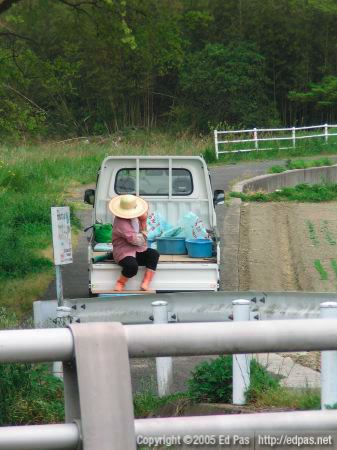 a woman in the back of a truck, putting on her backpack of fertilizer