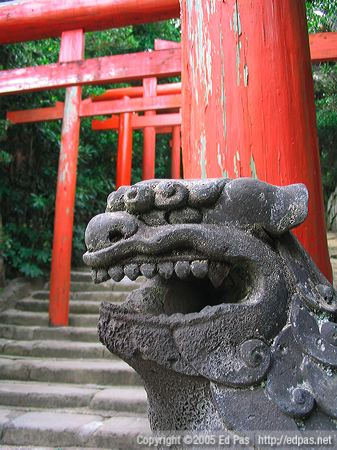 lion dog with torii in the background, probably near Udo Jinja in Miyazaki Prefecture
